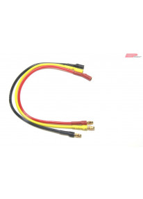 EP Motor Extension Lead